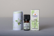 Volatile Jasmijn India (Jasminumgrandiflorum) 1ml